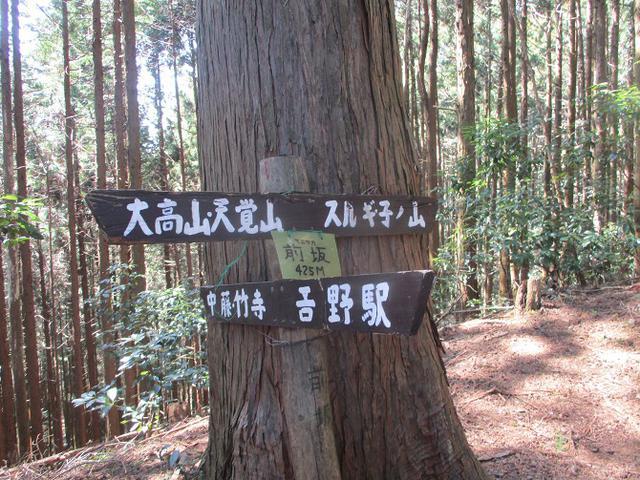 画像2: 企画素材を探して西武線沿線の 大高山から天覚山 を歩いてみました!