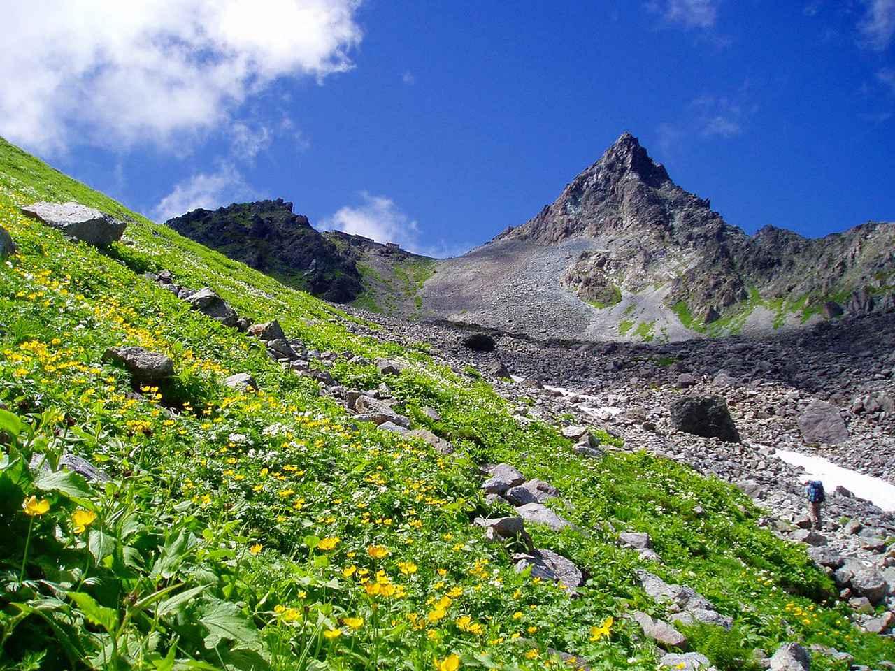 画像: 平地と標高2000m以上の日本アルプスでは環境ががらりと変わります
