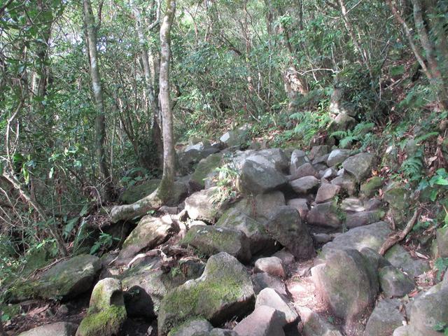 画像6: 来年春の企画素材を探して鹿児島県の 開聞岳 に行ってきました!