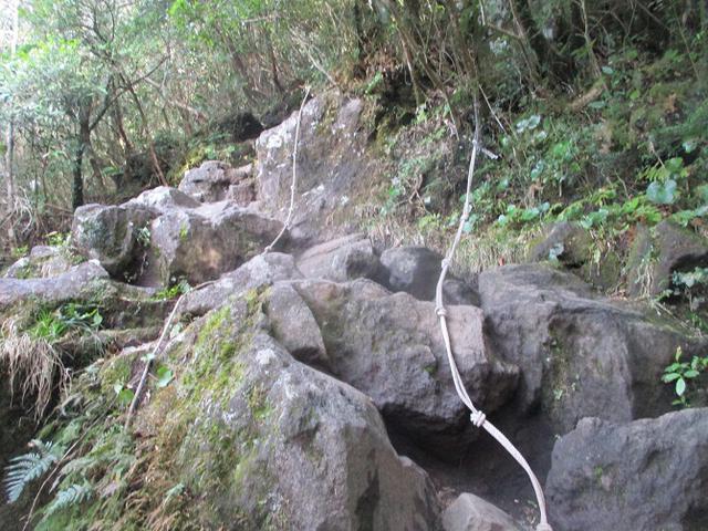 画像7: 来年春の企画素材を探して鹿児島県の 開聞岳 に行ってきました!