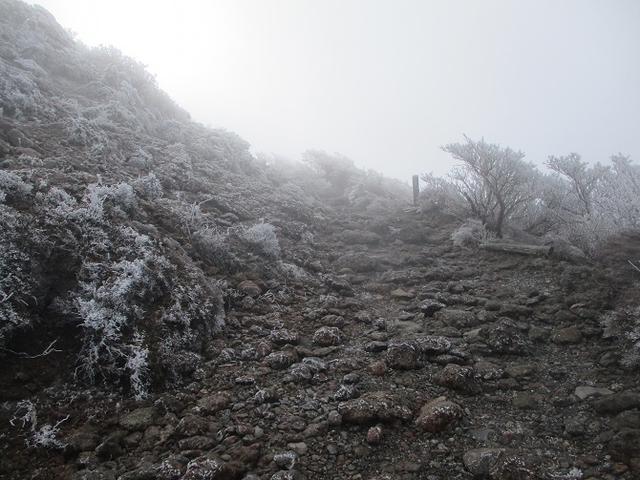 画像1: 来年春の企画素材をさがして九州の 韓国岳 に行ってきました!