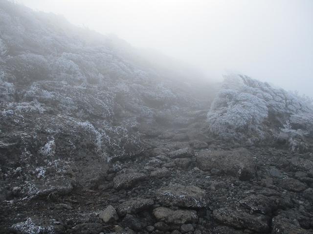 画像2: 来年春の企画素材をさがして九州の 韓国岳 に行ってきました!
