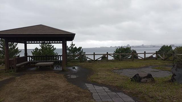 画像11: 来年春の企画の素材を探して鹿児島の 城山 に行ってきました!