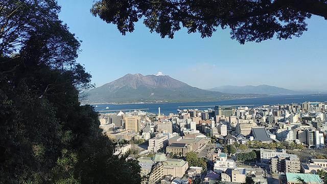 画像3: 来年春の企画の素材を探して鹿児島の 城山 に行ってきました!