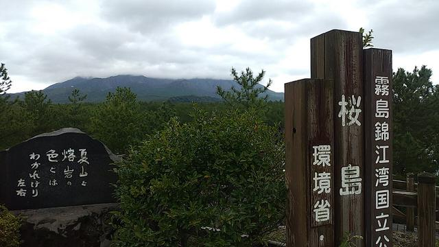 画像8: 来年春の企画の素材を探して鹿児島の 城山 に行ってきました!