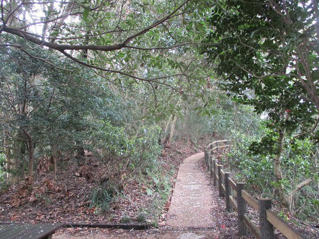 画像10: 本日は能見堂緑地から大丸山の下見のご報告です!