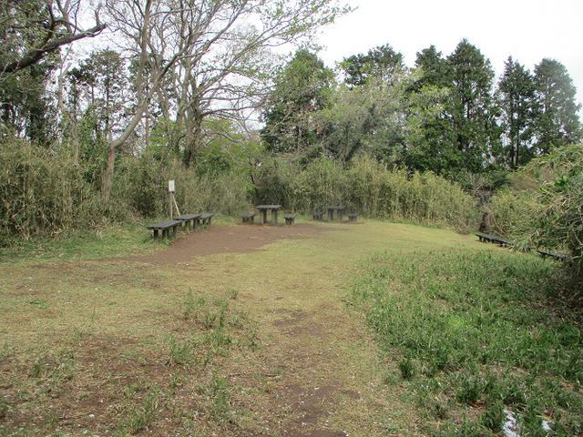 画像11: 本日は能見堂緑地から大丸山の下見のご報告です!