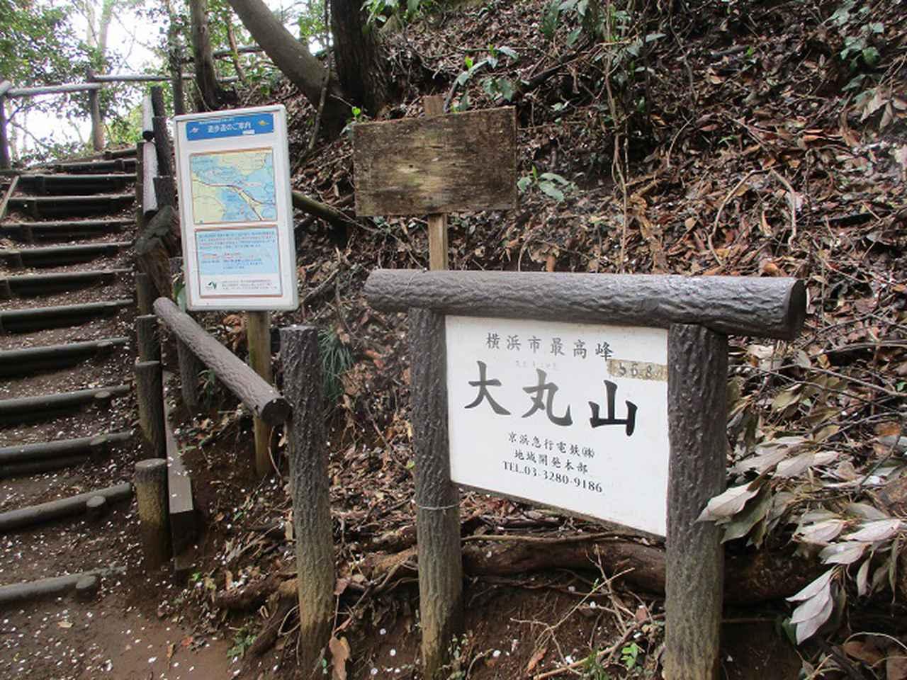 画像13: 本日は能見堂緑地から大丸山の下見のご報告です!