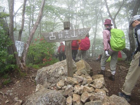 画像6: 本日は5月のツアーの栃木県の 古賀志(こがし)山 のご案内です!