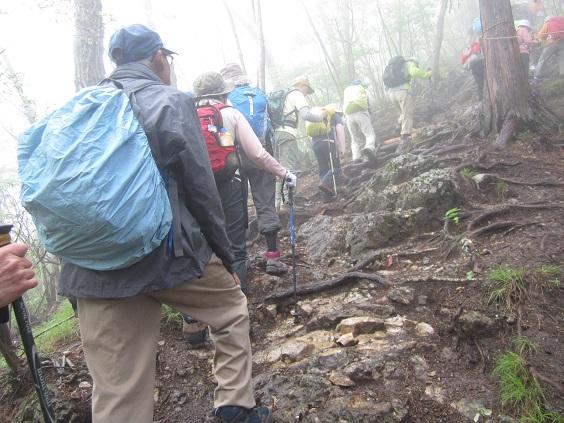 画像2: 本日は5月のツアーの栃木県の 古賀志(こがし)山 のご案内です!