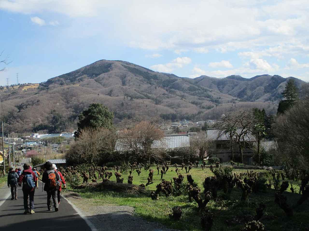 画像12: 岡田ガイドのコースで 陣見山 ツアーに行ってきました!