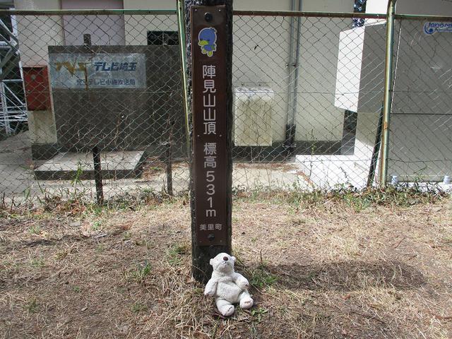 画像3: 岡田ガイドのコースで 陣見山 ツアーに行ってきました!