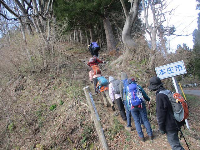 画像8: 岡田ガイドのコースで 陣見山 ツアーに行ってきました!