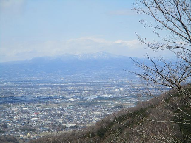 画像6: 岡田ガイドのコースで 陣見山 ツアーに行ってきました!