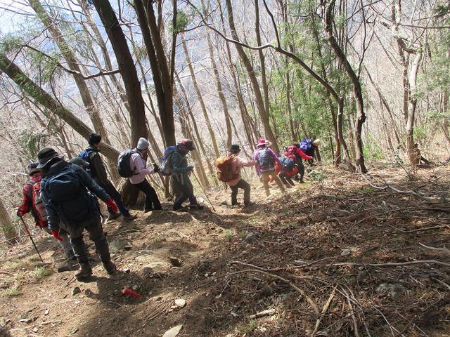 画像5: 岡田ガイドのコースで 陣見山 ツアーに行ってきました!