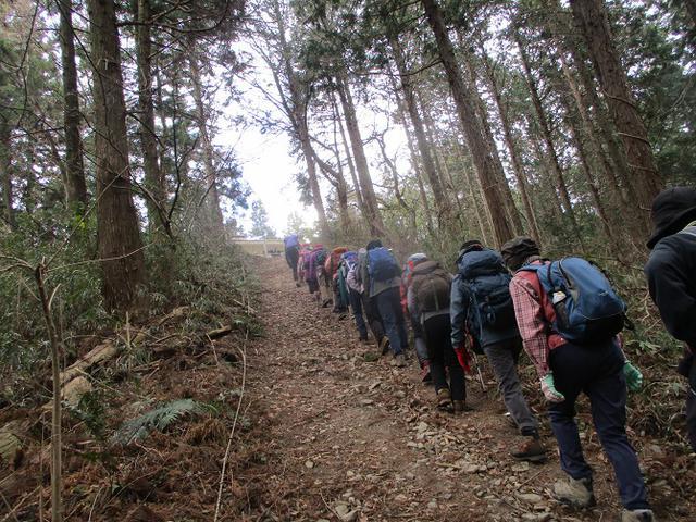 画像2: 岡田ガイドのコースで 陣見山 ツアーに行ってきました!