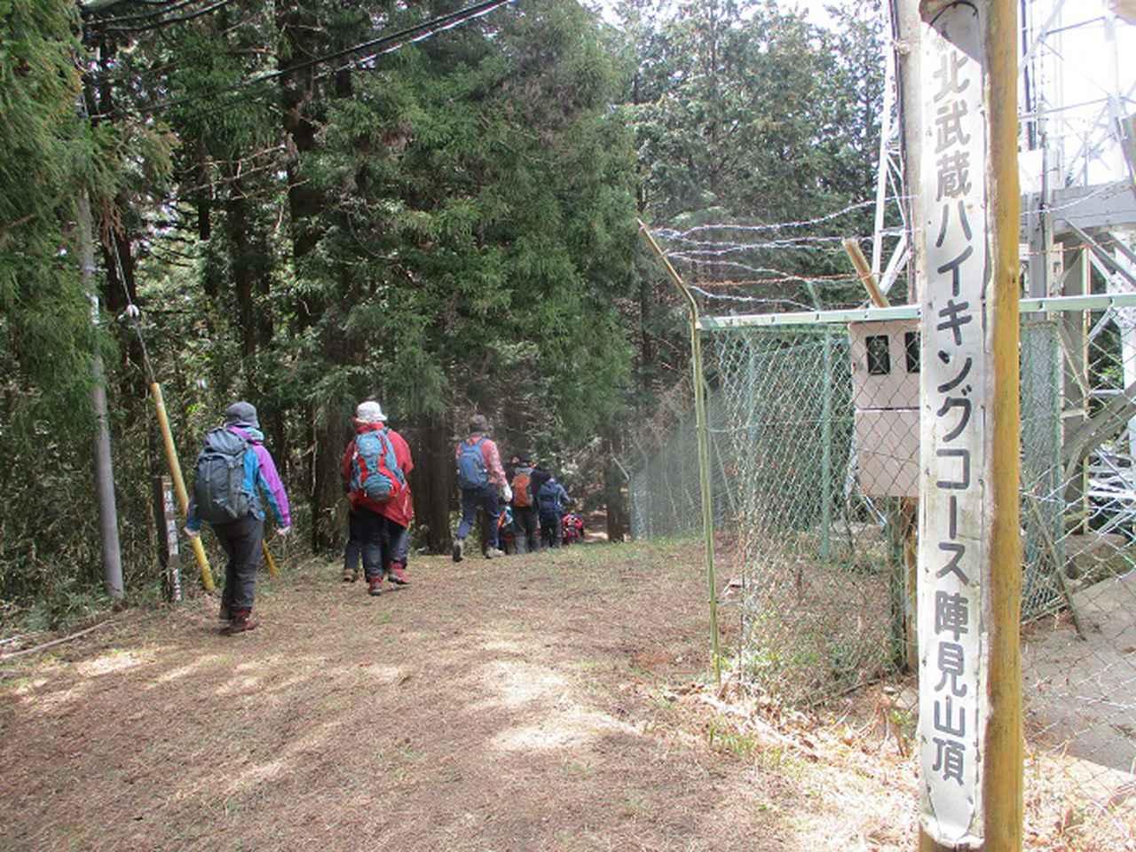 画像4: 岡田ガイドのコースで 陣見山 ツアーに行ってきました!