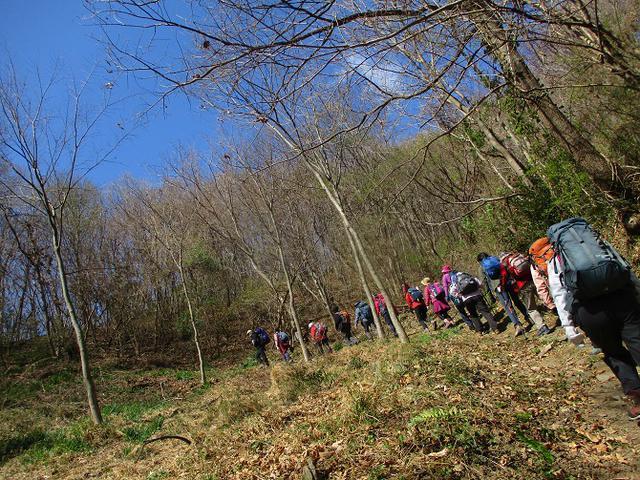 画像6: 岡田ガイドのコースで埼玉県にたたずむ 陣見山 へ行ってきました♪