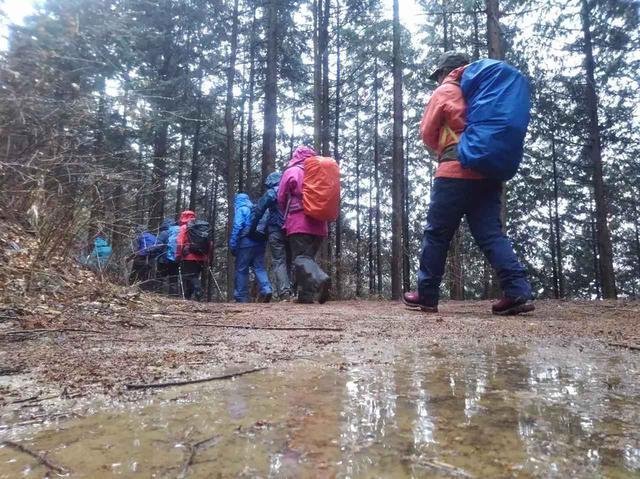 画像: 雨の日の山歩きはまた新しい世界につながる