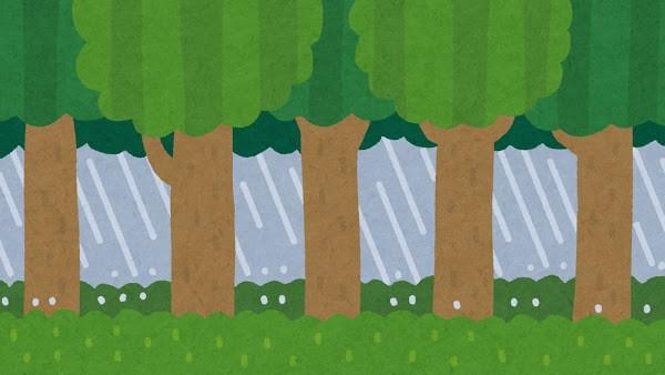 画像: 雨具がないとどうなるの??