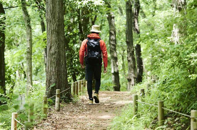 画像: 一人で登山を始めたい初心者必見|約80%がひとり参加!登山ツアーのすすめ