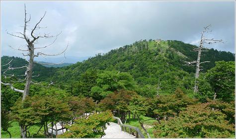 画像: 大台ヶ原山【おおだいがはらやま】登山|奈良県・三重県・日本百名山ツアー