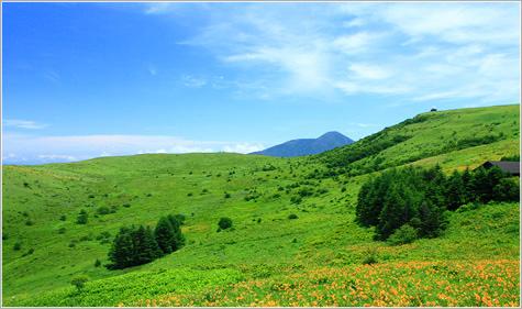 画像: 霧ヶ峰【きりがみね】登山|長野県・日本百名山ツアー