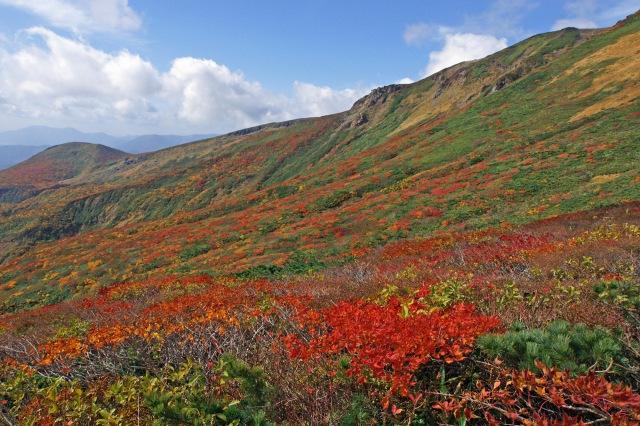 画像: 蔵王山