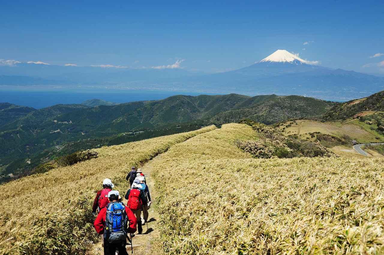 画像: 富士山を見渡す稜線