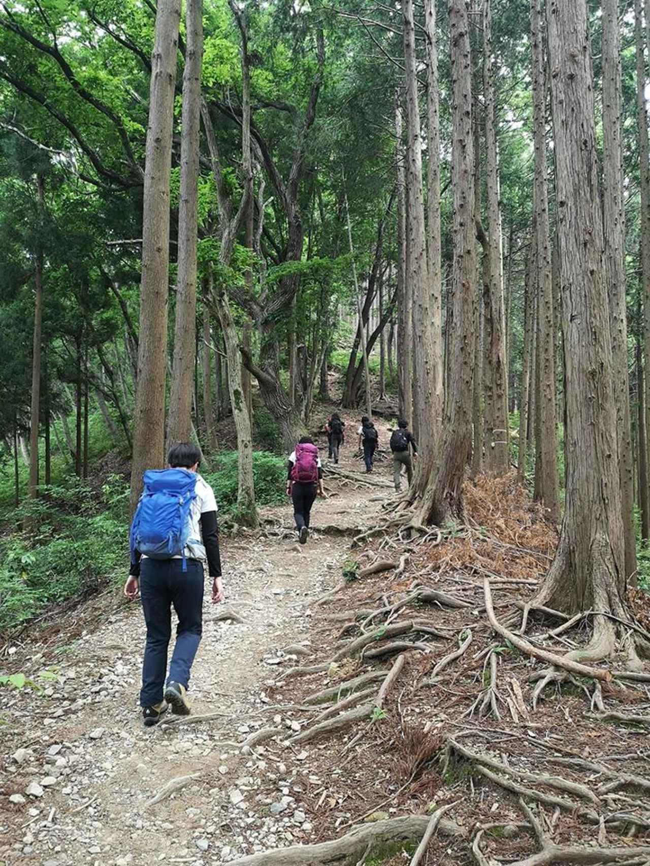 画像: 【登山の旅】登山ツアーにおける新型コロナウイルス感染予防対策について ~安心してご参加いただくために~