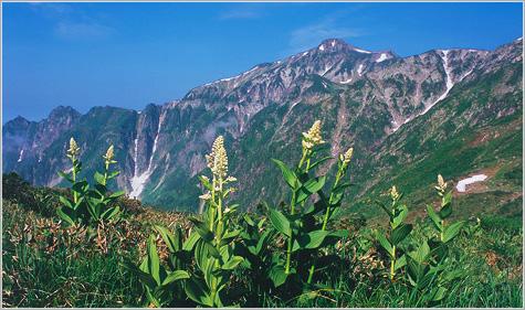 画像: 笠ヶ岳【かさがたけ】