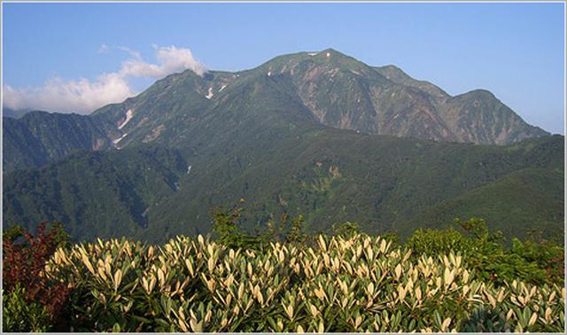 画像: 越後駒ヶ岳【えちごこまがたけ】
