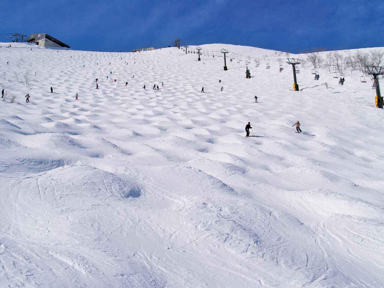 画像: 白馬八方尾根スキー場
