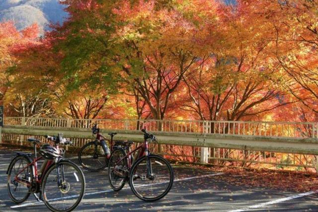 画像2: 『山岳信仰が息づく三峯神社の宿坊に泊まる!秩父の霊峰とマインドフルネス体験ツアー 3日間』 <1名1室同額/GoToトラベル支援事業対象>|クラブツーリズム