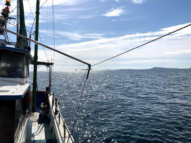 画像: 漁体験もお楽しみ!(イメージ)