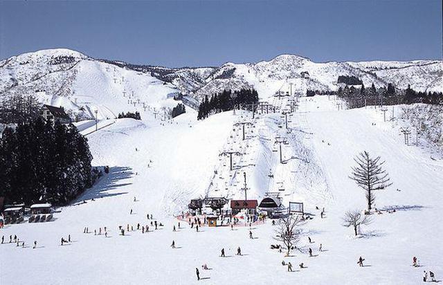 画像: 上越国際スキー場