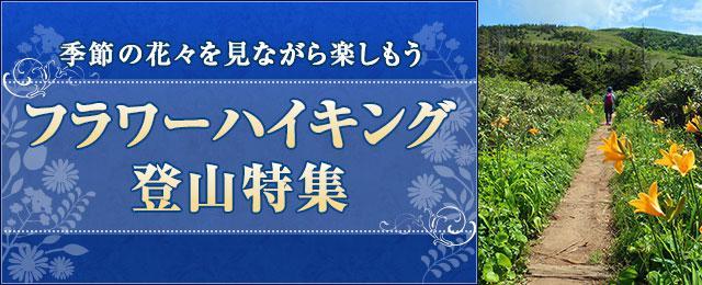 画像: フラワー(花)ハイキング・登山ツアー・旅行|クラブツーリズム