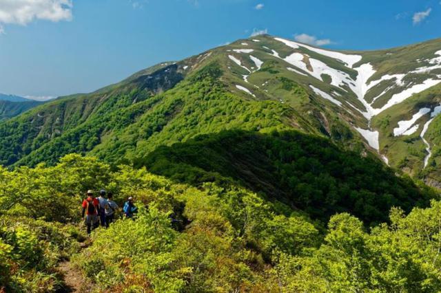 画像1: 登山道の様子