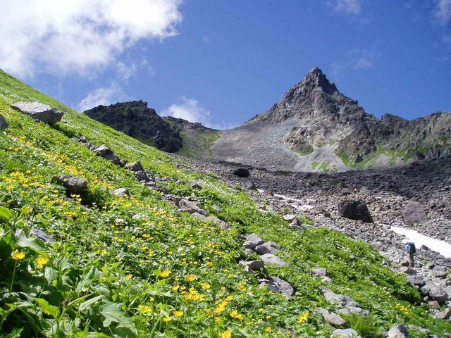 画像: 槍ヶ岳山頂とお花畑