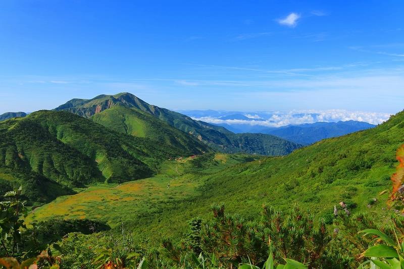 画像: 夏の白山