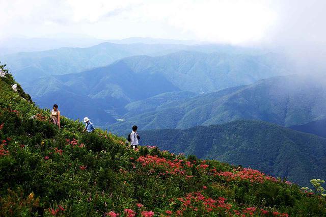 画像: 登山道