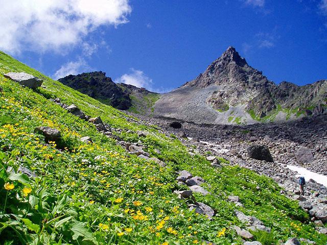 画像: 槍ヶ岳に登り隊(北アルプスに登り隊)旅行・ツアー│クラブツーリズム
