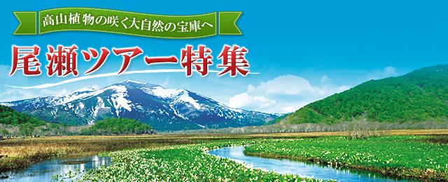 画像: 尾瀬旅行・ツアー 特集ページはこちら