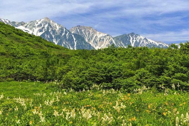 画像: 夏(6~8月)におすすめの山25選|夏は登山・ハイキングで高山植物や絶景を!
