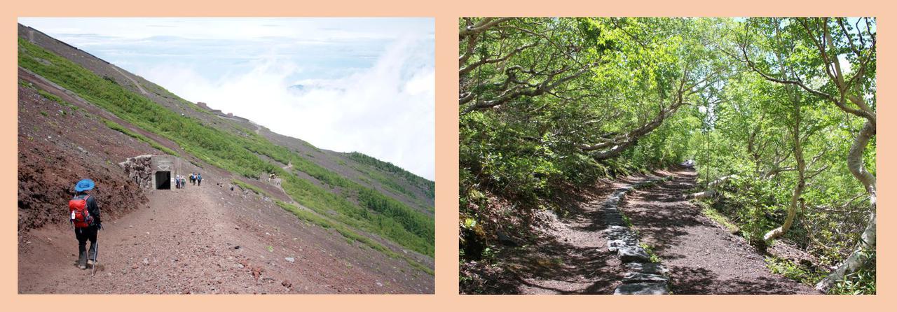 画像: 左:富士山五合目から六合目の登山道(イメージ) 右:御中道(イメージ)