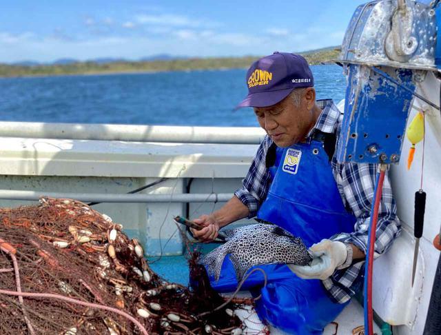 画像: 漁体験の様子
