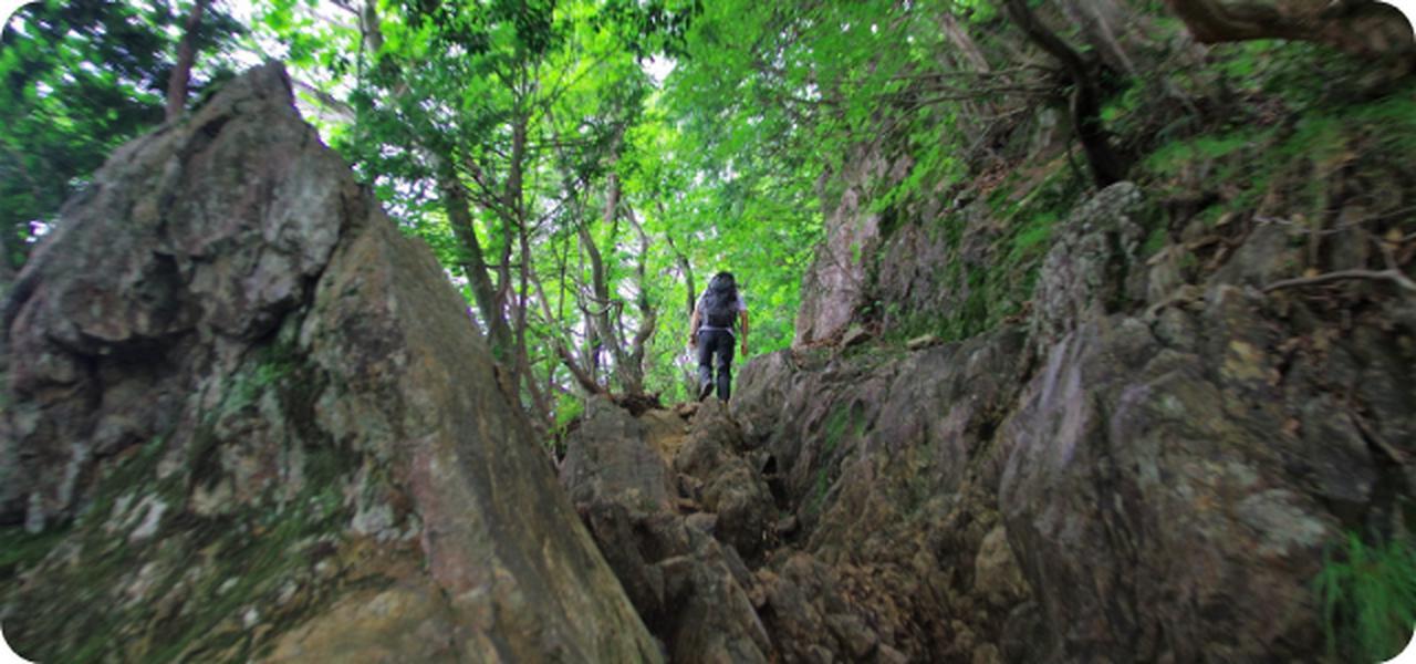 画像: 御岳山から大岳山へと続く岩道。武蔵国を代表する山岳信仰の聖地です(写真:大内征)