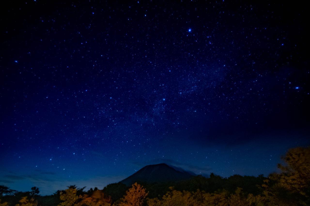 画像: ガイドの解説つきの星空鑑賞会も楽しみです!