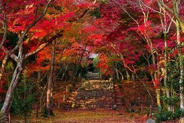 画像: 【21433】『紅葉の京都をめぐる 永観堂・南禅寺・浄住寺2日間』<ゆったり旅70/ひとり参加限定>|クラブツーリズム