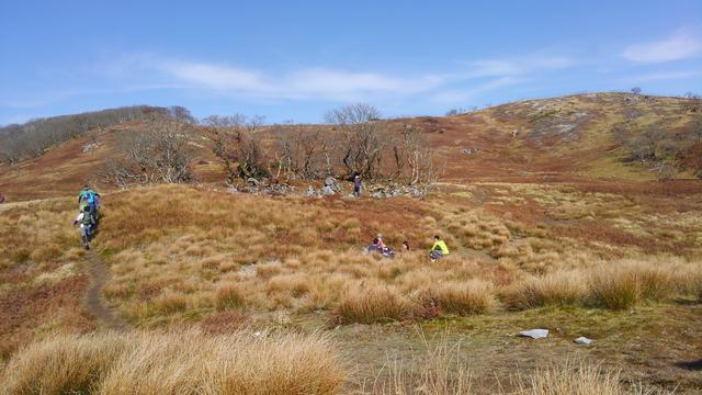 画像: 御池岳のカルスト地形